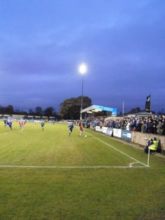 Dungannon Swifts v Linfield, 16.11.2013  http://analogueboyinadigitalworld.wordpress.com/2013/11/16/dungannon-swifts-v-linfield-photo-special-5/