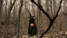 PUMPKINROT.COM:  What's Brewing Samhain Halloween, Brewing, Witch, Bird, History, Plants, Photography, Animals, Outdoor
