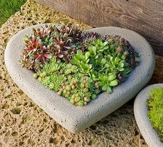 Create a unique centerpiece on your patio table with the Heart Large Planter, part of our Garden Planters Collection. Herb Garden, Garden Art, Garden Design, Garden King, Green Garden, Garden Tools, Organic Gardening, Gardening Tips, Vegetable Gardening