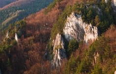 Mountains of my Home by Jakub Polomski, via Behance