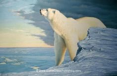 Welcome to the Fine Art Website of Tom Mansanarez - Tom Mansanarez Fine Art Polar Bear Illustration, Pub Vintage, Mule Deer, Mountain Lion, Animal Totems, Art Graphique, Country Art, Illustrations, Wildlife Art