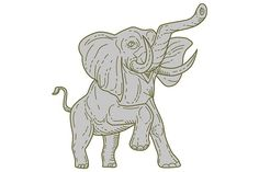 African Elephant Prancing Mono Line by patrimonio on @creativemarket