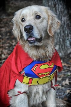 Super Marley © James W. Betts