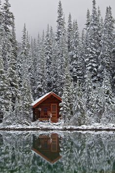 On the water and snow what a cute little cabin