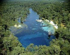 I want to scuba dive to the bottom of Wakulla Springs.
