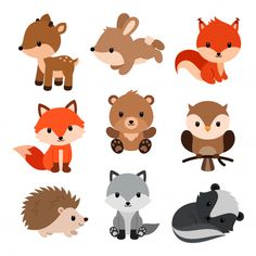 Find Woodland Animals Set stock images in HD and millions of other royalty-free stock photos, illustrations and vectors in the Shutterstock collection. Thousands of new, high-quality pictures added every day. Forest Animals, Woodland Animals, Baby Animals, Cute Animals, Baby Giraffes, Baby Zebra, Wild Animals, Baby Motiv, Clip Art Library