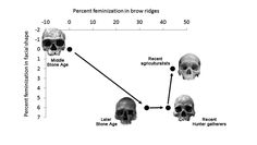 Early Humans Became More Feminine, Which Led to the Birth of Culture Darwin Evolution, Human Evolution, Cro Magnon, Early Humans, Hunter Gatherer, Anthropologie, Creative Thinking, Teaching Resources, Feminism