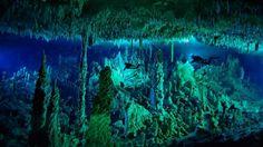 N. 23 Grande voragine blu - Sotto questo cerchio blu scuro si trova una serie di grotte sottomarine che sono lì da sempre!