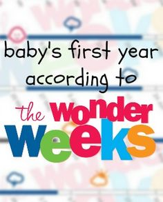 Baby's First Year According to The Wonder Weeks | Kansas City Moms Blog