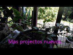Mas projectos nuevos