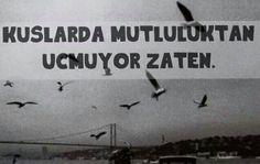 Kuşlar da mutluluktan uçmuyor zaten. #sözler #anlamlısözler #güzelsözler #manalısözler #özlüsözler #alıntı #alıntılar #alıntıdır #alıntısözler