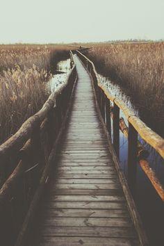 BOIS-NATURE-IMAGE pont en bois, ambiance naturel