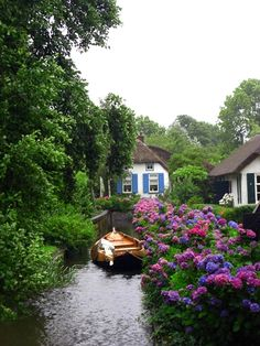 Giethoorn - Netherlands  Cottage along a canal.    Hydrangeas in bloom . . .