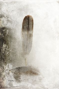 """Feathers in Balance""    A big feather is balancing on top of a down feather. The word down comes from the Old Norse word dunn. The down feather is considered to be the ""simplest"" of all feather types.     This photo is enhanced with textures and belongs to a series.    The photo is one in a series, but can definitely be a beautiful addition to any home, office or hospitality environment on its own. Contact me for more info about the whole series!    Signed and numbered fine art printed…"