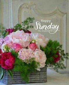 Good Morning Sunday Images, Sunday Morning Quotes, Sunday Wishes, Good Afternoon Quotes, Good Morning Happy Sunday, Happy Sunday Quotes, Blessed Sunday, Morning Greetings Quotes, Good Morning Greetings