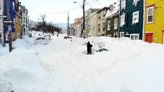 Highest snowfall observed in N. storm was 93 cm: Environment Canada Storm Surge, Weather News, Newfoundland And Labrador, Winter Storm, The Province, Capital City, Environment, Canada, Outdoor
