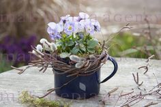 Container gardening is a fun way to add to the visual attraction of your home. You can use the terrific suggestions given here to start improving your garden or begin a new one today. Your garden is certain to bring you great satisfac Indoor Gardening Supplies, Container Gardening, Beautiful Gardens, Beautiful Flowers, Growing Strawberries In Containers, Garden Bulbs, Deco Floral, Visual Display, Floral Arrangements