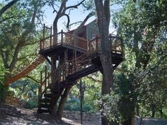 Barbara Butler-Extraordinary Play Structures for Kids-Tree Top Inn: View from afar