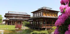Japanischer Garten Bad Langensalza - BadLangensalza.de
