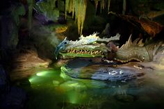 The Dragon under DLP Sleeping Beauty Castle
