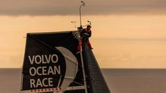June The Volvo Ocean 65 fleet as they sail past Denmark during the sunset, as they face the last miles to the finish line in Gothenburg. Team Alvimedica spotting for wind Carlo Borlenghi / Volvo Ocean Race The World Race, Sail World, Last Mile, Volvo Ocean Race, Olympic Champion, Finish Line, Continents, Denmark, A Team