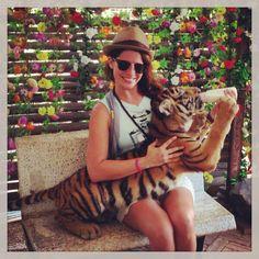 Tiger Zoo Koh Samui, Thailand