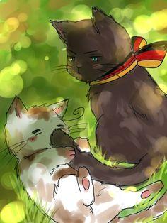 kitty germany and italy