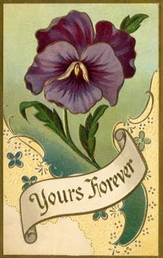 Antique Postcard perfect for my Grandma Viola who loved purple