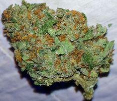 Super Sour Widow, Super Sour Diesel x White Widow #nuggz #weed
