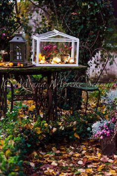 Höstplantering i växthuset * Autumn in the green house   blomsterverkstad