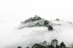 Sintra - Seconds before we couldn't see a thing, seconds later the sky was clear.... Such a magical moment.  www.jolienroos.be