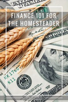 Homesteading is all about self-sufficiency. That also means the financial independence to live the life we want. Here's the best way to get started on your path to financial self-sufficiency.