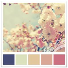 Navy, Tan & Coral Color Scheme - quilt colour scheme or pallet idea