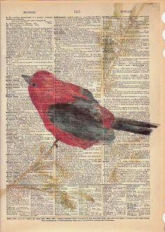 September  Bird Art  Vintage Book Page Print  by MaiAutumn