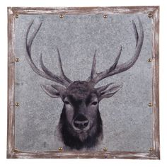 Plum & Post offers a wide selection of home accent, furniture, garden decor & more. Check out this Printed Deer Wall Art and view more products from Plum & Post.