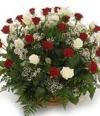 Rose bianche e rosse: purezza e passione insieme #sanvalentino2014