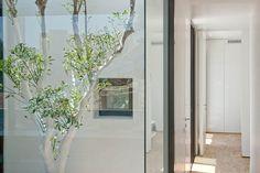 Barud House | Itai Paritzki & Paola Liani Architects