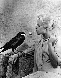 Women and their birds tipping Hedren The Birds Hitchcock