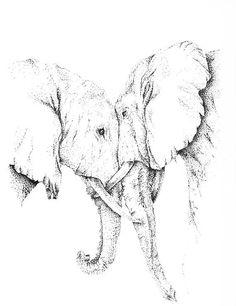 Elephant Love. Pen & Ink by ajct