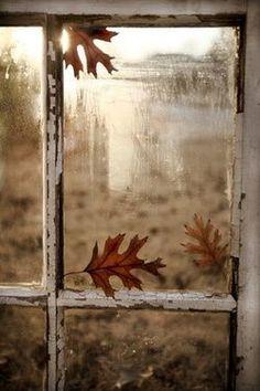 Finestra d'autunno
