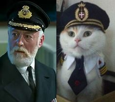 Doppelganger Doppelgänger Iceberg Titanic Captain Cat