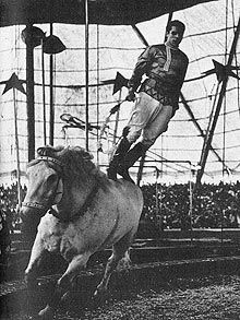 Man performs on horse.  please stop the abuse of circus animals by boycotting current circuses that use animals in their acts