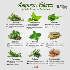 Healthy Tips, Healthy Recipes, Japanese Menu, Weight Loss Tea, Wonderful Recipe, Plantar, Yams, Health Remedies, Natural