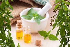 The aroma of Peppermint Essential Oil is natural and lovely to most. Peppermint Oil is exceptionally serious and is undeniably more thought than most other steam refined essential oils. Buy pure Peppermint Essential oil from Prasadhak. Herbs For Menopause, Menopause Symptoms, Menopause Supplements, Menopause Relief, Migraine Relief, Pain Relief, Auswirkungen Von Stress, Double Menton, Ravintsara