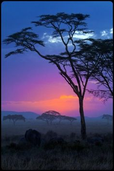 There is nothing like an African sunset…