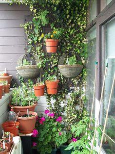 Ideas for 16 genius vertical gardening ideas for small gardens balcony as w Small Balcony Garden, Small Space Gardening, Small Gardens, Indoor Garden, Gardening Tips, Outdoor Gardens, Balcony Gardening, Porch Garden, Balcony Ideas