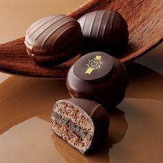 こだわりのチョコレートに纏われて。【バレンタインデー届け専用】【高島屋限定】プレミアムショコラマカロン