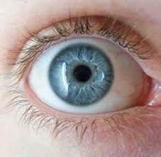 DE TODO UN POCO: Los ojos como referencia.