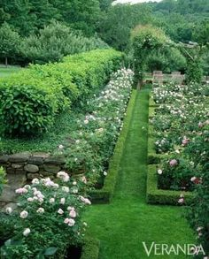 Stone and roses and boxwood oh my! Swoon