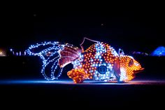 Fishie, 2012 = Mutant vehicle at Burning Man.
